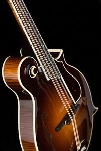 Collings Mf5 Custom with Fern Inlay