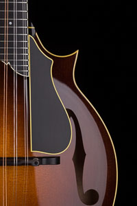 Collings MF5 Varnish with Torch and Wire Peghead Inlay