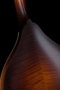 Collings MT Mandolin with Torrefied Sitka Spruce Top