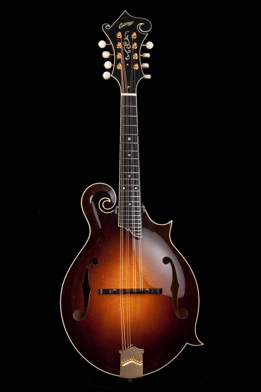 Collings Mf5 Full Gloss F Style Mandolin Framus Guitar Wiring Diagram