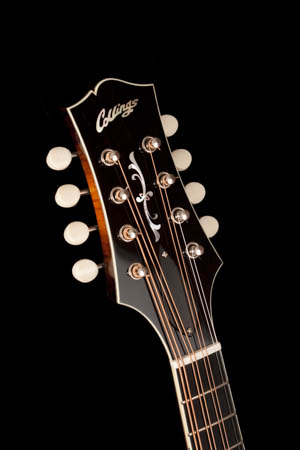 Collings MT2 Full Gloss A-style Mandola